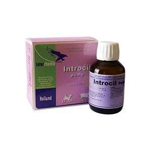 Introcil Pump
